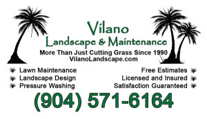 Vilano Landscape Business Card Design
